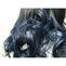 艶黒髪×原色ブルーのグラデーションカラー